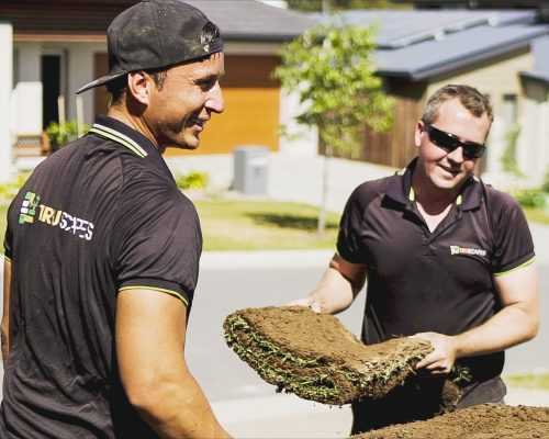 for guaranteed garden and landscape Brisbane service